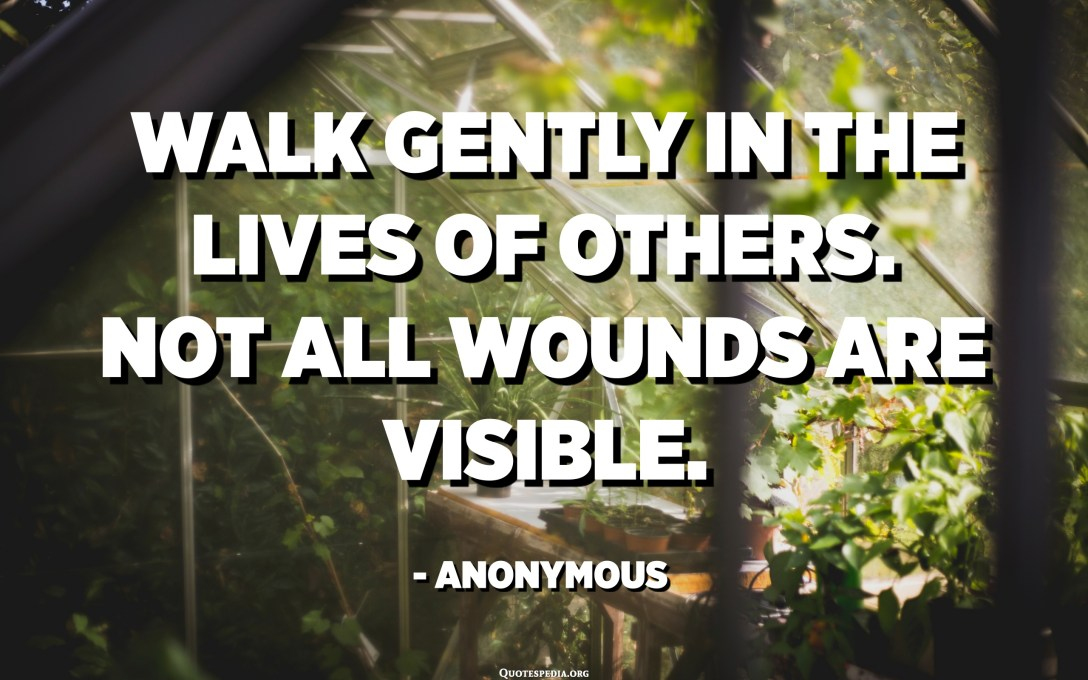 Walk gently in the lives of others. Not all wounds are visible. - Anonymous