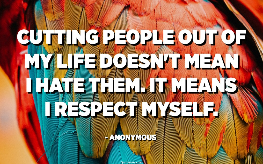 Cutting people out of my life doesn't mean I hate them. It means I respect myself. - Anonymous