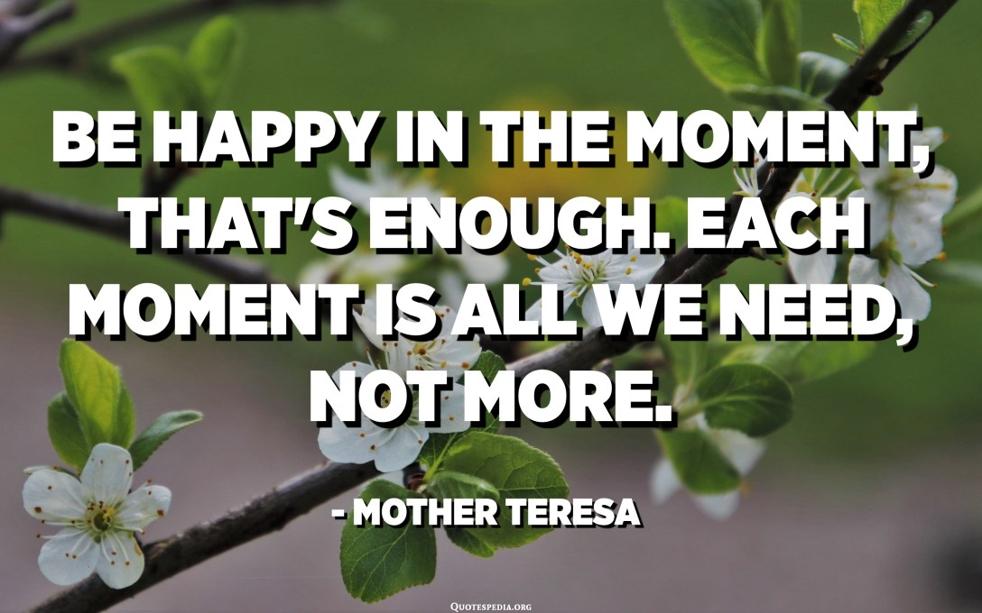 Be happy in the moment, that's enough. Each moment is all we need, not more. - Mother Teresa