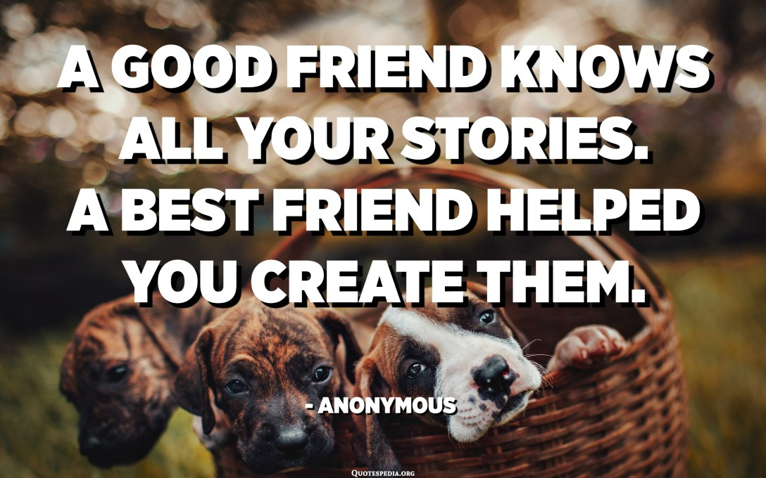 A good friend knows all your stories. A best friend helped you create them. - Anonymous
