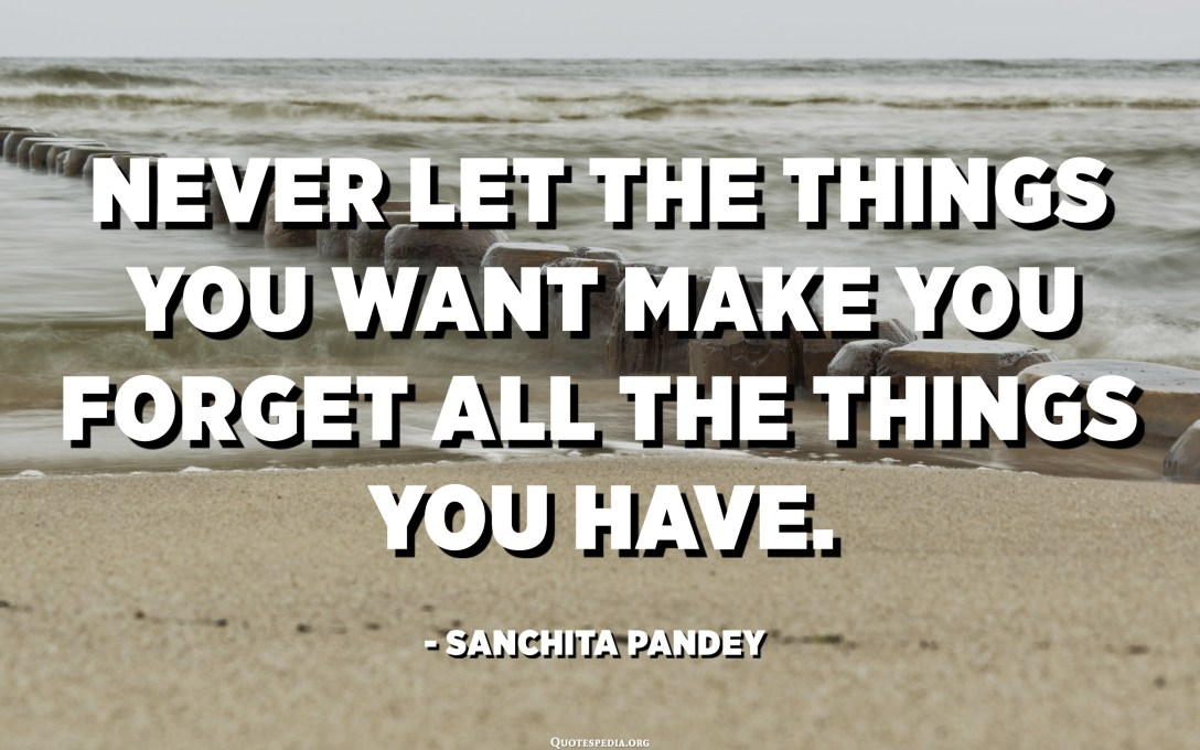 Never let the things you want make you forget all the things you have. - Sanchita Pandey