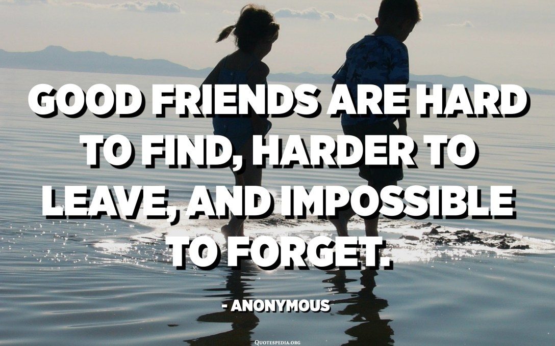 Good friends are hard to find, harder to leave, and impossible to forget. - Anonymous