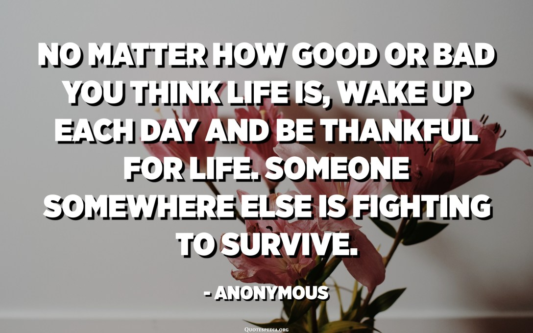 No matter how good or bad you think life is, wake up each day and be thankful for life. Someone somewhere else is fighting to survive. - Anonymous
