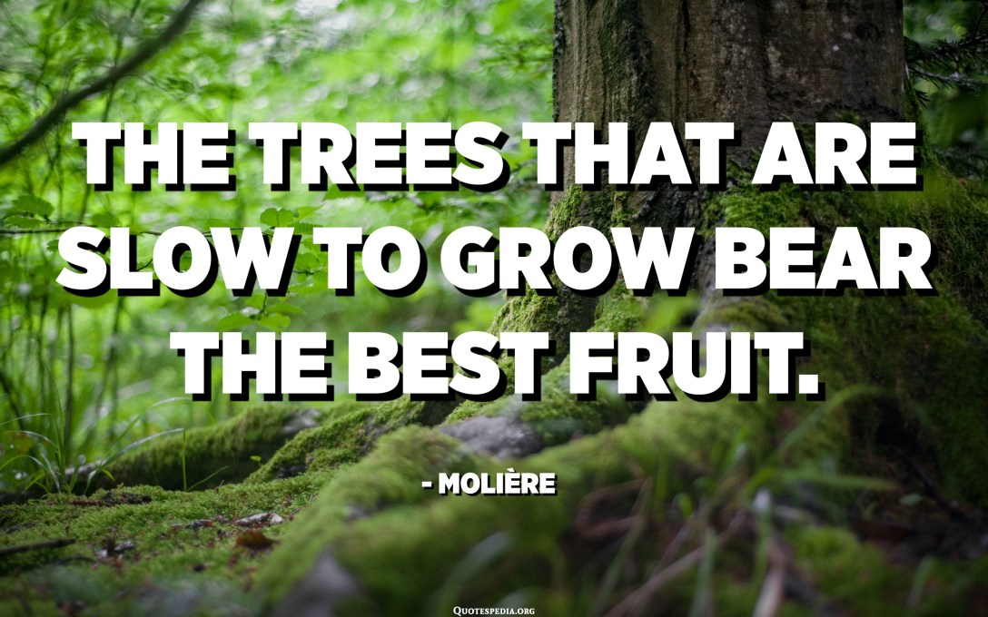 The trees that are slow to grow bear the best fruit. - Molière, Playwright