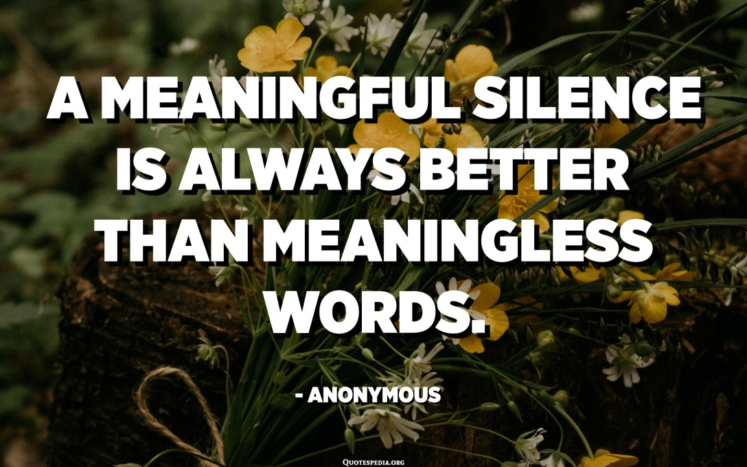 A meaningful silence is always better than meaningless words. - Anonymous