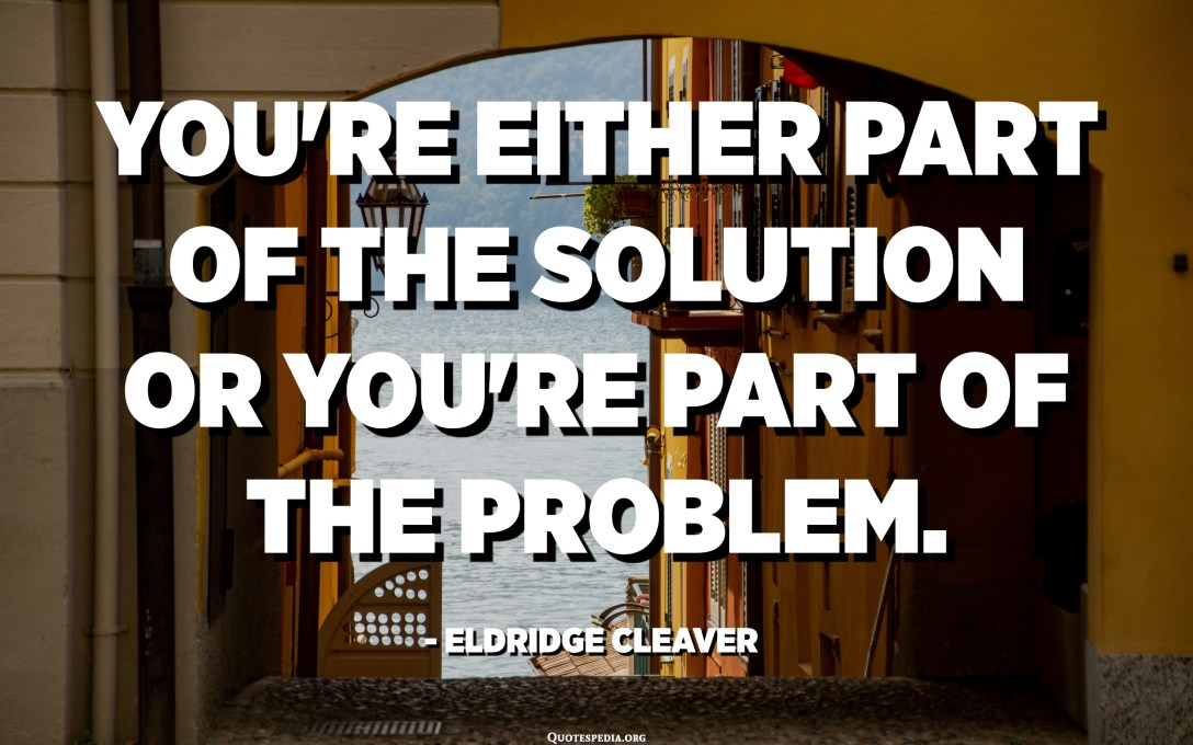 You're either part of the solution or you're part of the problem. - Eldridge Cleaver
