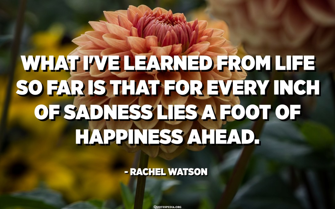 What I've learned from life so far is that for every inch of sadness lies a foot of happiness ahead. I've learned that the simplest of times brings the grandest of pleasures and that the hardest goodbyes often lead to the best hellos. - Rachel Watson