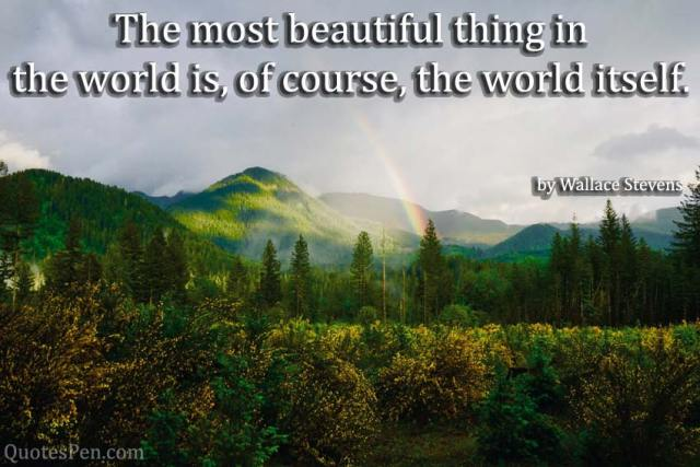 most-beautiful-thing-quote
