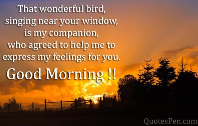 that-wonderful-bird-quote