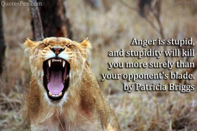 anger-stupid