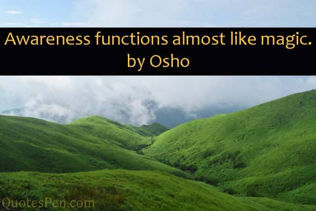 awareness-functions-quote