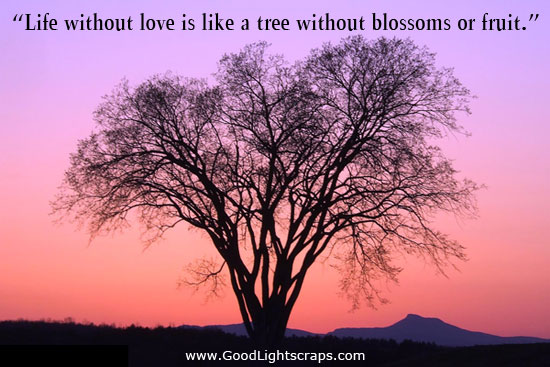 Life without love is like a tree without blossoms or fruit ...