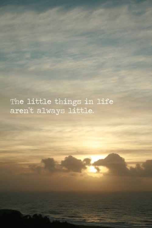 The little things in life aren't always little. | Unknown ...