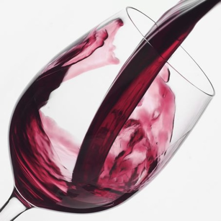 cata-vino