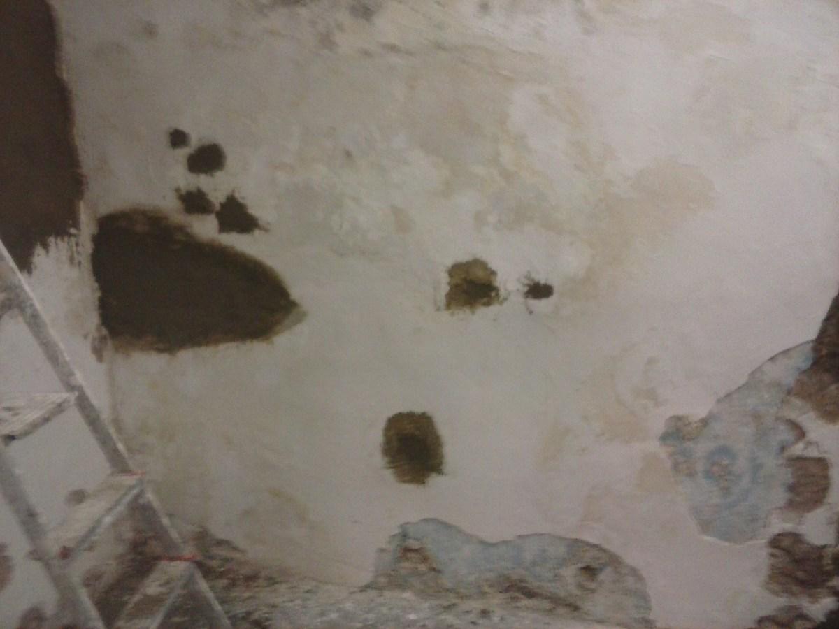 Tratamiento anti-humedad para paredes deterioradas