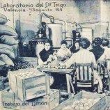 laboratorio dr trigo trinaranjus