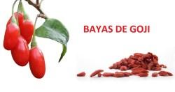 Bayas-de-goji-