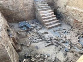 Yacimiento-Arqueologico-Turunuelo