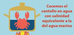 cocer-centollo-salinidad-agua
