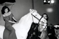 bianca-jagger-horse-studio-54-29apr