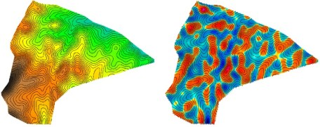 Elevation surface (left) and resulting mean curvature estimate (right)