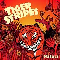 Tiger Stripes - Safari