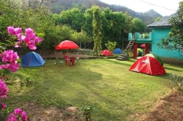 jungle camping in dharamshala