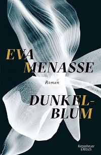 Cover_Menasse_Dunkelblum