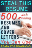 Steal this Resume by Mark Petterson