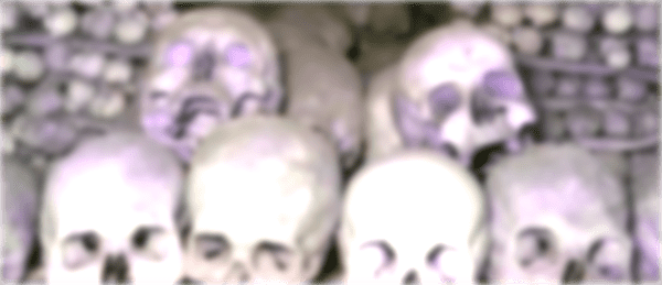 Halloween_Skulls