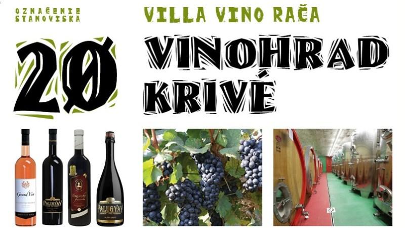 20 Vinohrad Krivé / Villa Vino Rača