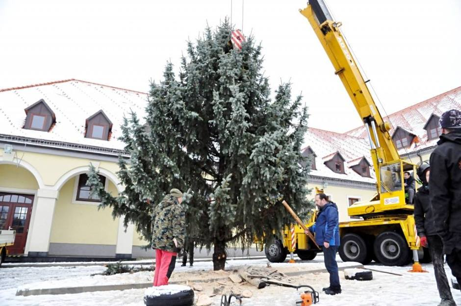 Stromček je už na parkovisku pre Nemeckým kultúrnym domom pripravený.