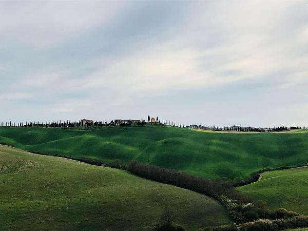 In direzione di Siena, la val d'Orcia ci stupisce di nuovo e non possiamo fare a meno di fermarci a osservare le colline.