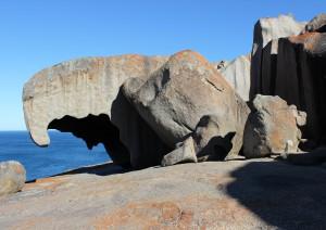 Kangaroo Island - Adelaide.jpg