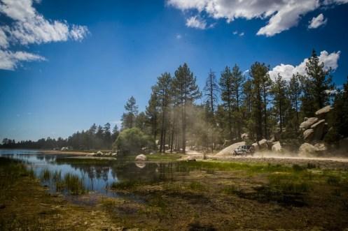 baja-pine-forrest-trail-of-missions-2017-harroldphoto-07