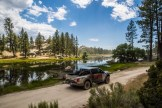 baja-pine-forrest-trail-of-missions-2017-harroldphoto-09