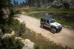 pine-forrest-baja-trail-of-missions-2017-binkdesigns-15