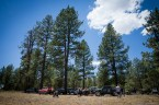 pine-forrest-baja-trail-of-missions-2017-binkdesigns-17