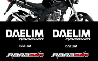 New Stickers Fairing Kit for DAELIM ROADWIN