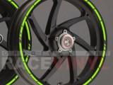 Principal SPEED ER6N er 6n moto sticker vinyl rim stripe