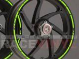 Principal SPEED ER6N er 6n moto sticker vinyl rim stripe