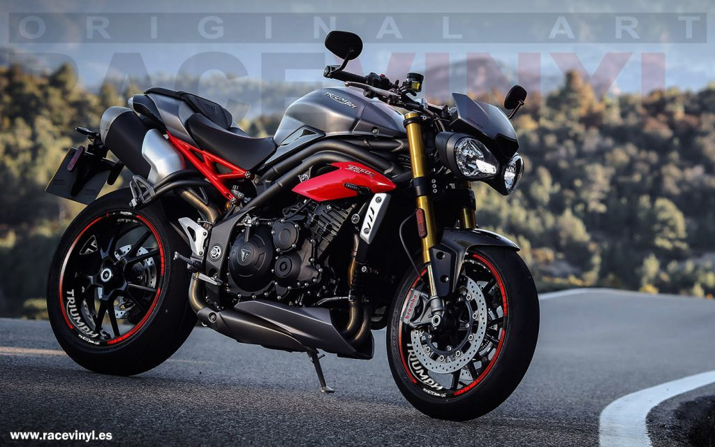 rim stickers kit pro in vinyl for Triumph Speed Triple 02