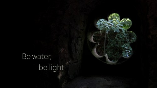 Be water, be light