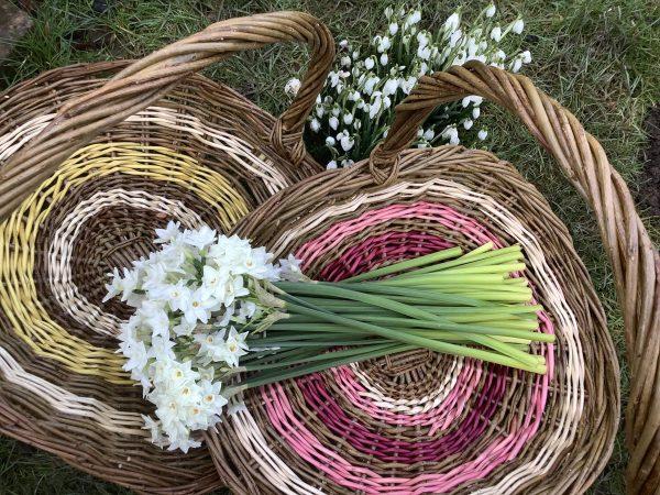 Gathering Baskets 4
