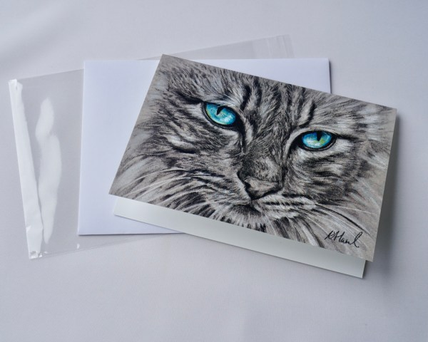 Blue Eye Cat 3