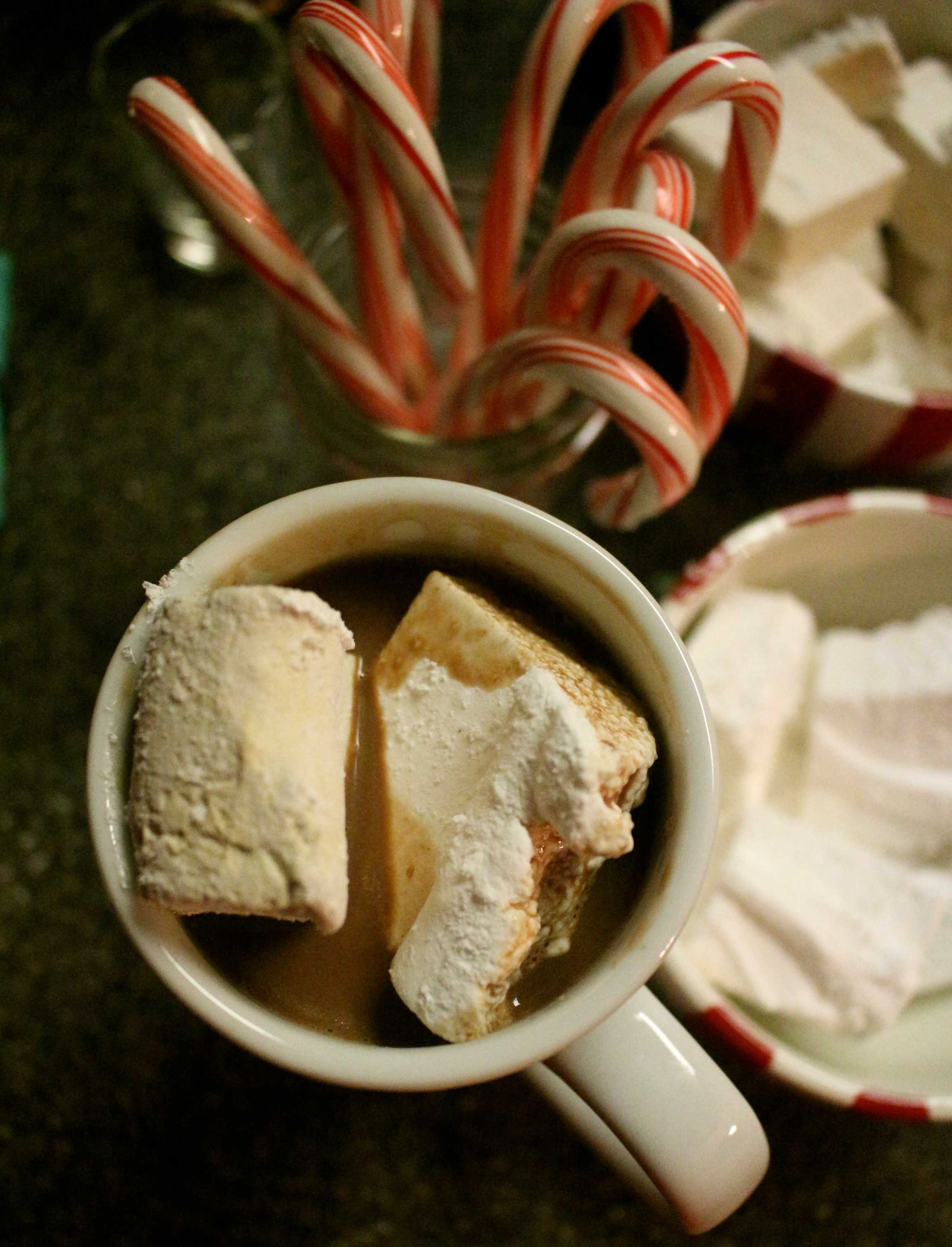 Don't Judge Me Mondays: Hot Cocoa Bar