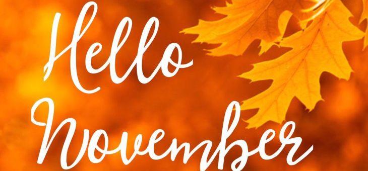 November Bookish Musings-Orenda Books, Blogtours and readalongs galore!