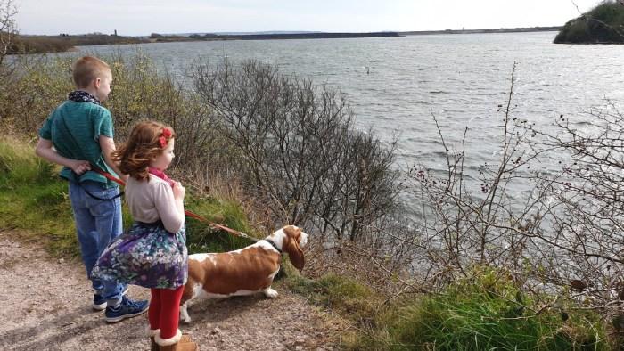 #MySundaySnapshot - Daily Dog Walking 14/52 (2020)