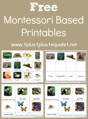 Number Names Worksheets montessori free printable materials : The Best Montessori Printables