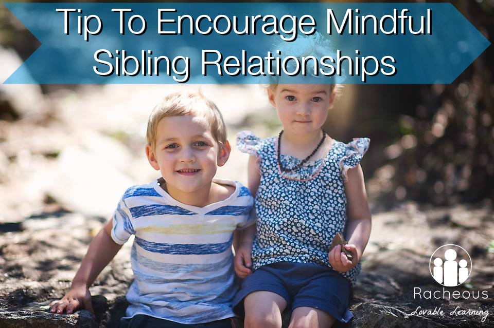 Tip To Encourage Mindful Sibling Relationships